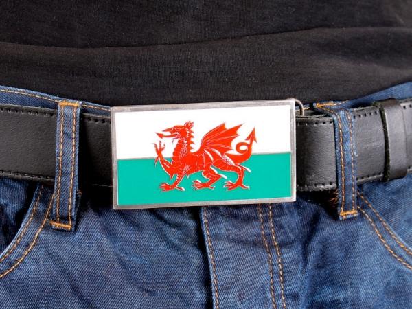 welsh-dragon-flag-21-4